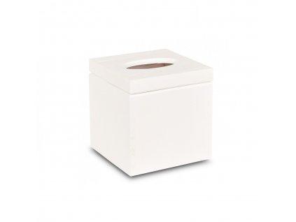 Dřevěná krabička na kapesníky čtvercová bílá s panty