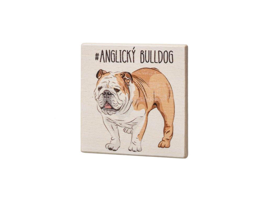 Drevený podtácok - Anglický bulldog