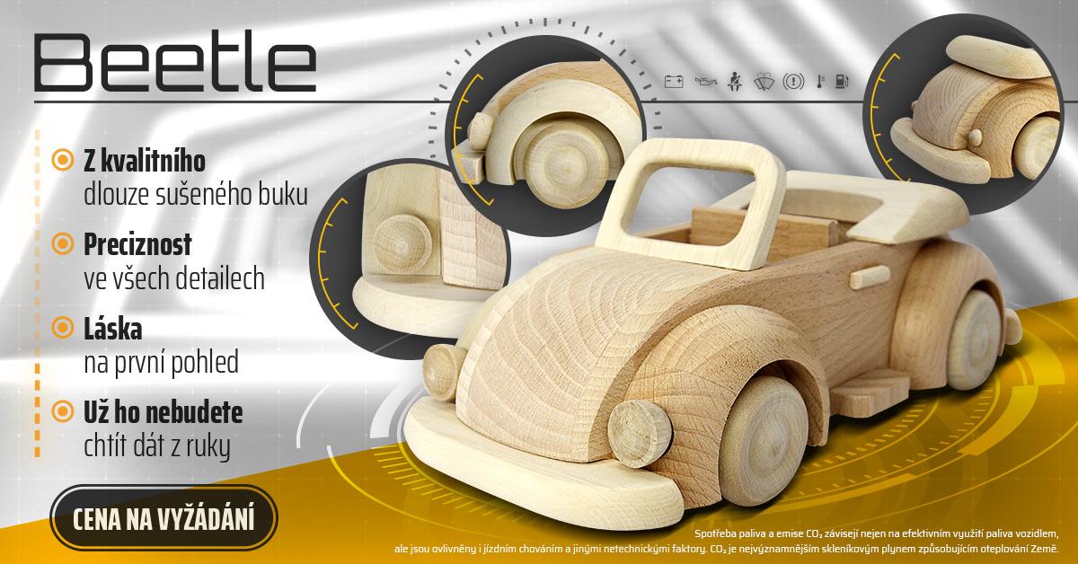 Dřevěný brouk