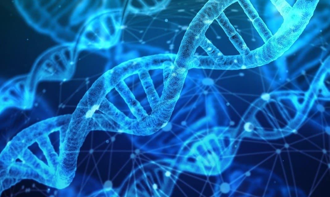 Co jsou to aminokyseliny? Přehled těch nejznámějších