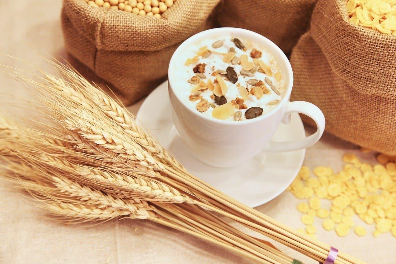 Co je to špalda a jaký je rozdíl oproti klasické pšenici?