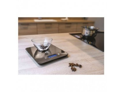 EMOS Digitální kuchyňská váha EV023, stříbrná EV023