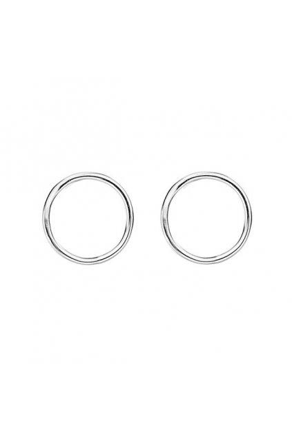 Circle earrings 2