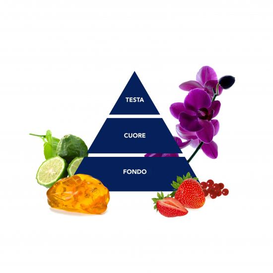 piramide_felce