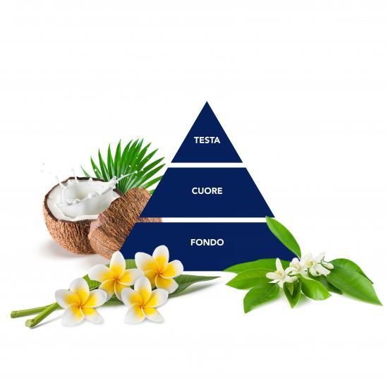 piramide_kokos