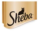sheba-2021