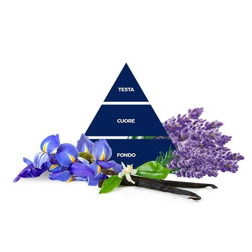 piramida-lavanda