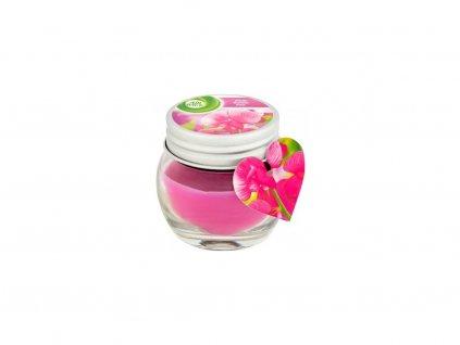 air wick vonna sviecka pink ruzove plody 30 g