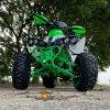 leramotors raptor 125ccm Pro 3+1 zeleno bila 12
