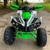 leramotors raptor 125ccm Pro 3+1 zeleno bila 15