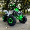 leramotors raptor 125ccm Pro 3+1 zeleno bila 17