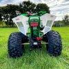 leramotors raptor 125ccm Pro 3+1 zeleno bila 6