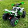 leramotors raptor 125ccm Pro 3+1 zeleno bila 9