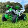 leramotors raptor 125ccm Pro 3+1 zeleno bila 1