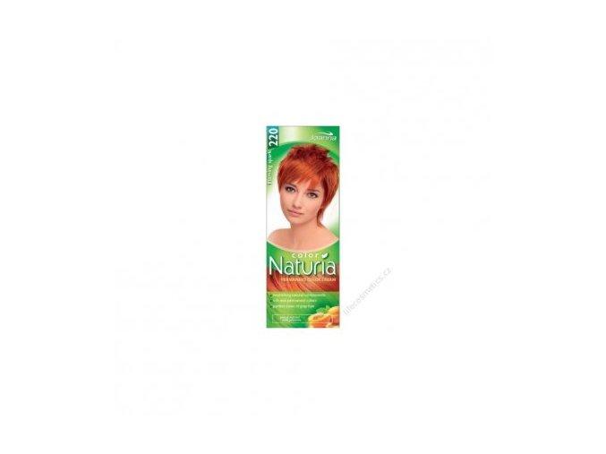 Barva na vlasy NATURIA COLOR - Ohnivá jiskra 220