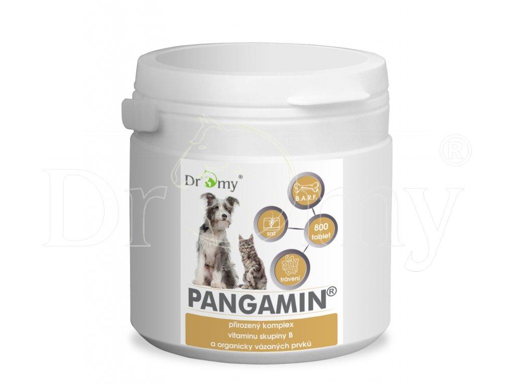 PANGAMIN