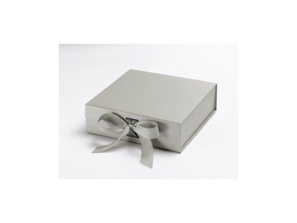 Střední stříbrná s vyměnitelnou stuhou