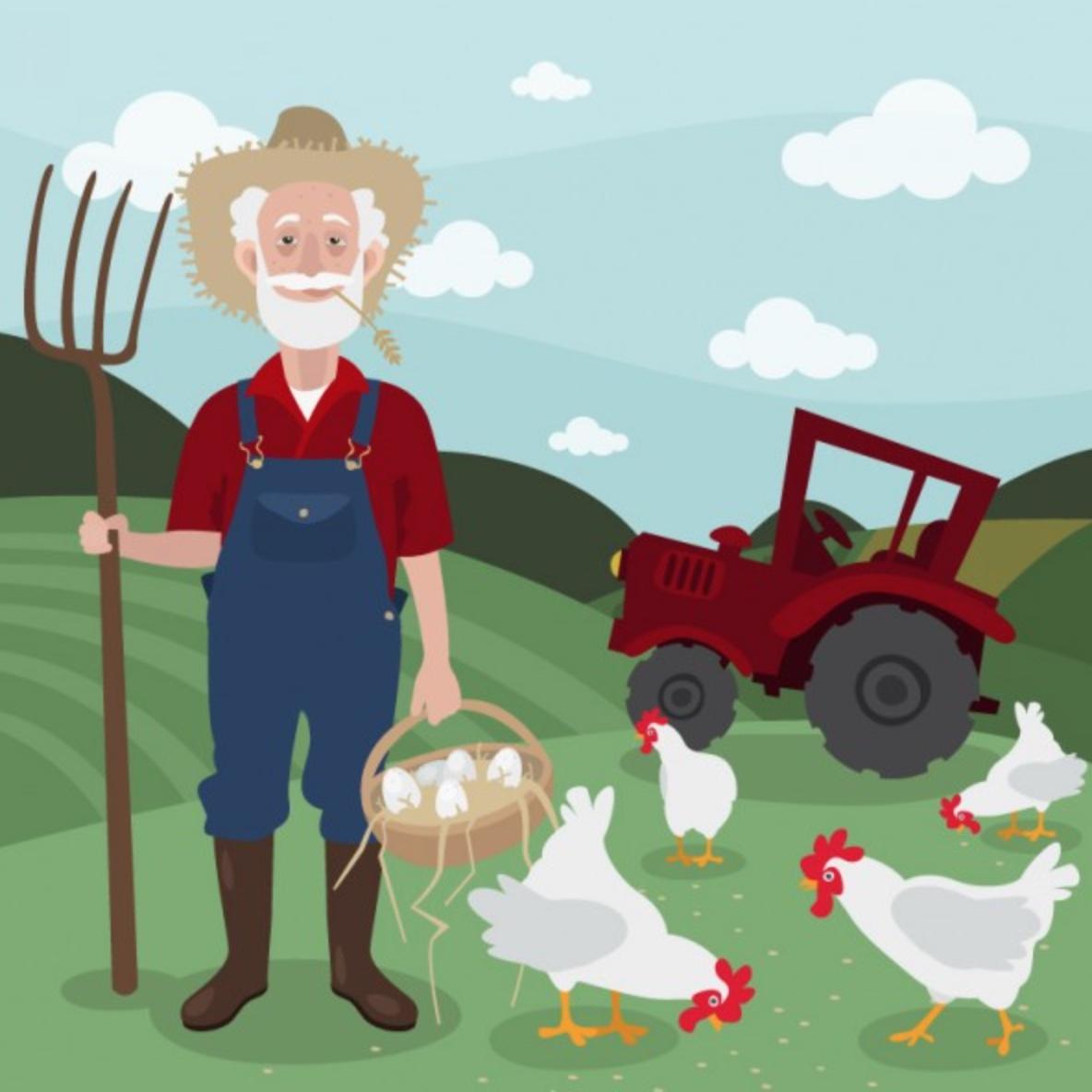 Videa z naší farmy