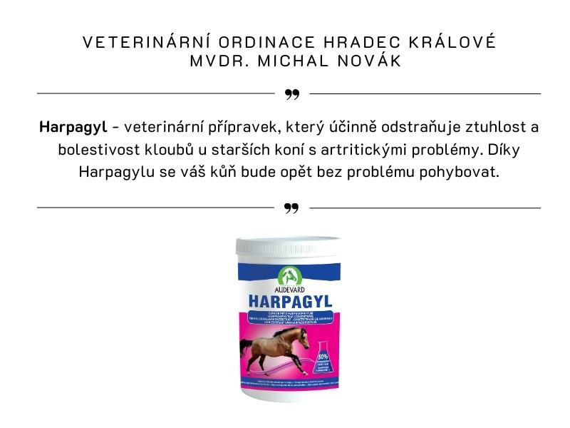 VETERINÁRNÍ ORDINACE HRADEC KRÁLOVÉ,  MVDR. MICHAL NOVÁK