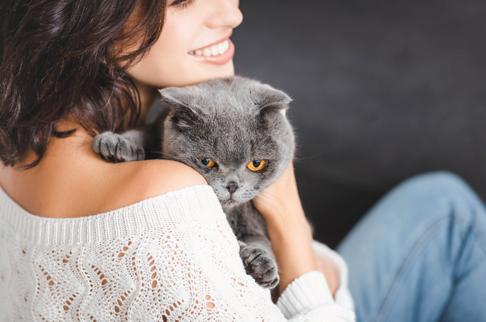 WePharm kočka