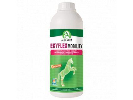 EKYFLEX MOBILITY 1