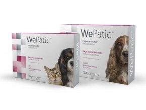 WePatic4