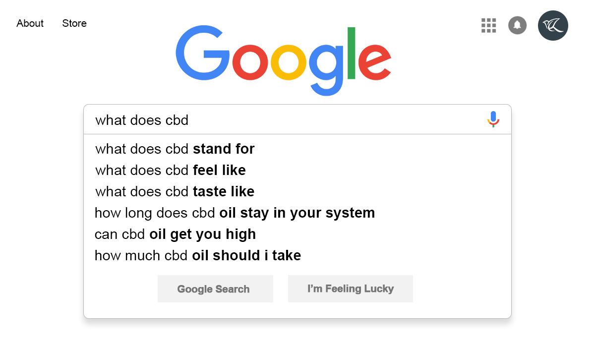 CBD, akupunktura, nebo jablečný ocet: Co lidé nejčastěji hledají?