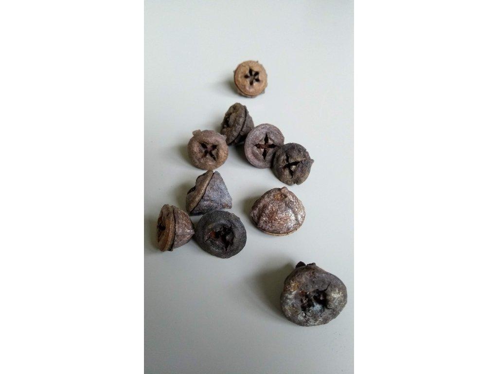 Eucalyptus button loose natur 12ks