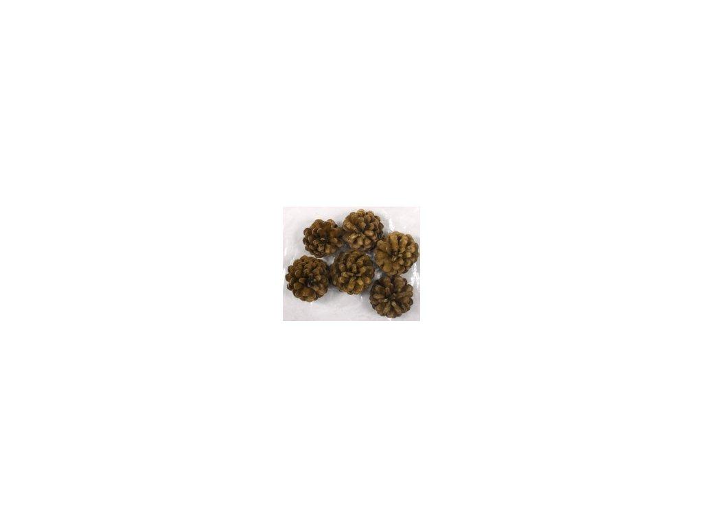 Dekorace - Šišky borovice 5-7cm 6ks