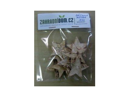 Dekorace ZAHRADNIDUM Betula Star - 10ks