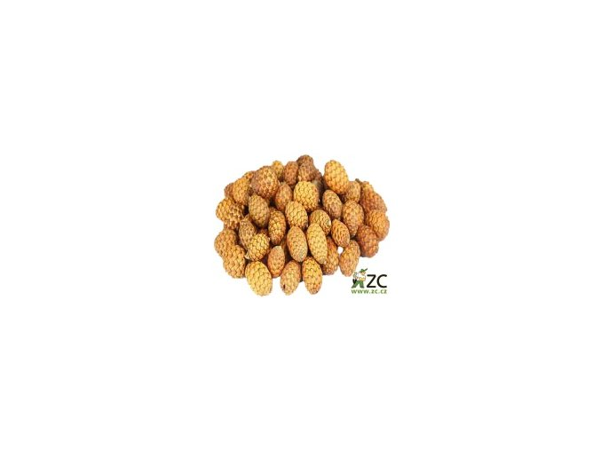 Dekorace - Cane Fruit 20ks