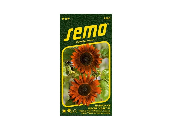 55037 slunecnice rocni claret f1 10s