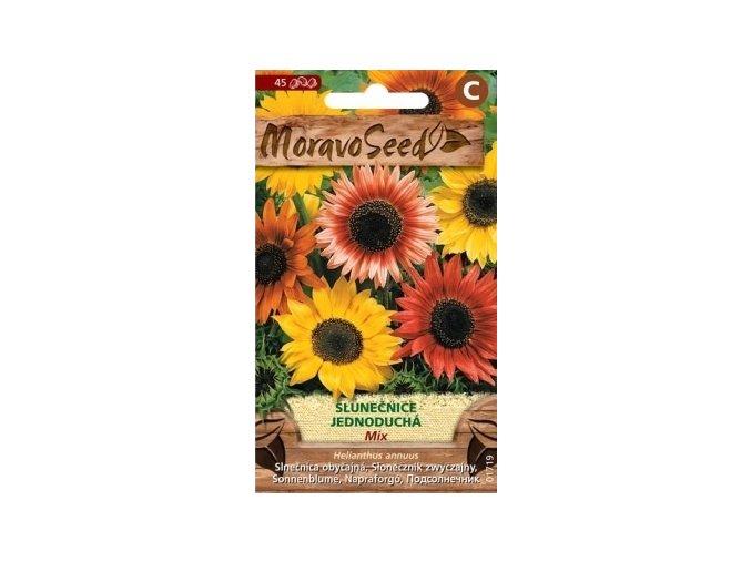 55070 slunecnice rocni mix moravoseed