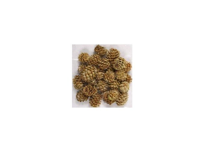 Dekorace - Salignum 40g
