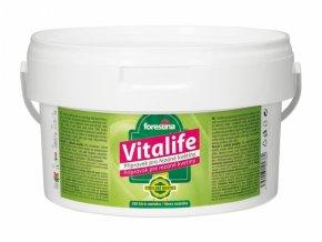 Výživa VITALIFE pro řezané květiny 2kg