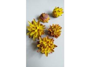 Plumosum loose yellow 5ks