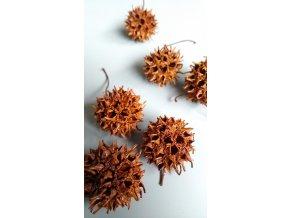 Amberbaum loose orange 6ks
