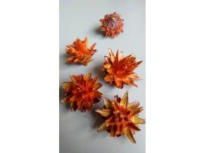 Plumosum loose orange 5ks