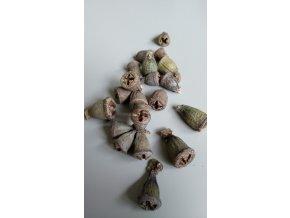 Eucalyptus Conical loose natur 16ks