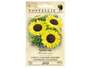 55067 slunecnice rocni jednoducha nostalgie