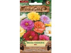 57401 srucha velkokveta plnokveta mix moravoseed