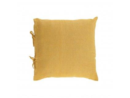 Tazu mustard 1