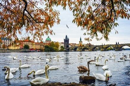 Zábava pro děti Praha