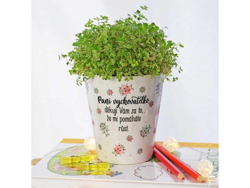 Květináč pro paní vychovatelku