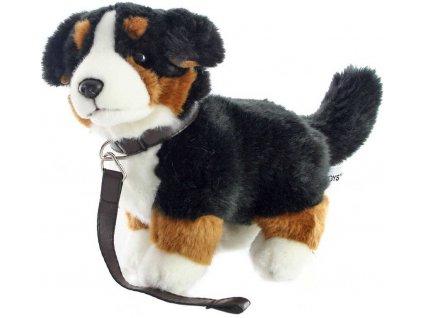 PLYŠ Pes salašnický bernský s vodítkem 26cm štěně salašník *PLYŠOVÉ HRAČKY*