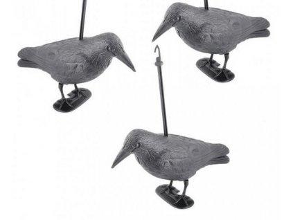 Krkavec odstrašující ptáky - set 3 ks