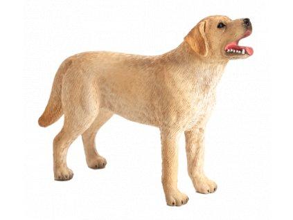 Mojo Animal Planet Labrador