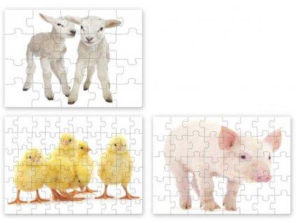 EFKO Puzzle 3v1 Mláďátka domácí zvířátka skládačka foto 30x21cm