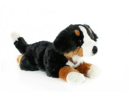 Plyš Bernský Salašnický pes 65 cm  + Dárek zdarma