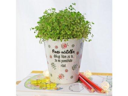 HOUSEDECOR Květináč pro paní učitelku